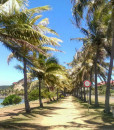 Noumea City Tours