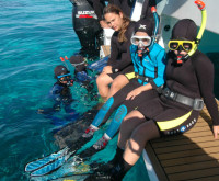 Diving New Caledonia